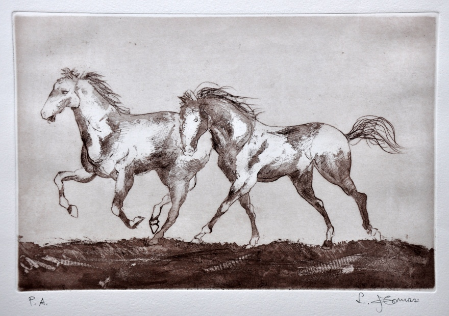cavalli-incisione-a-cera-molle-allacquaforte-su-lastra-di-zinco-mm-1-35x5-cm-2013